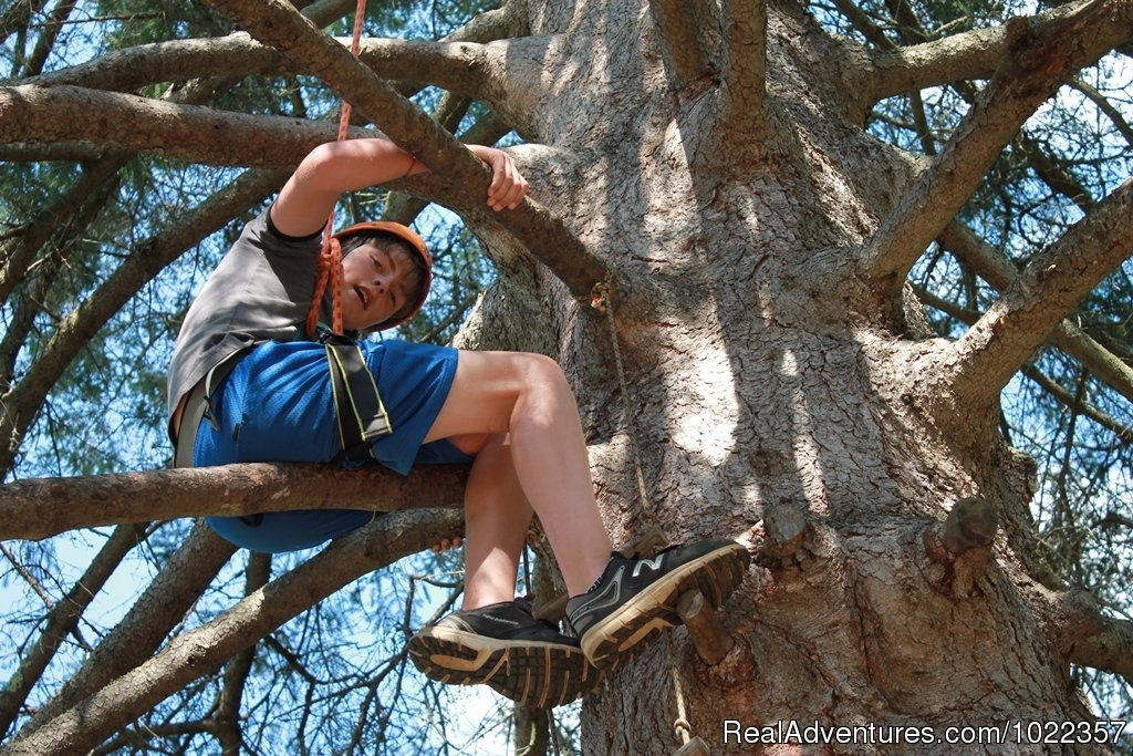 Climbing our tall tree | Image #9/19 | Ekocamp International