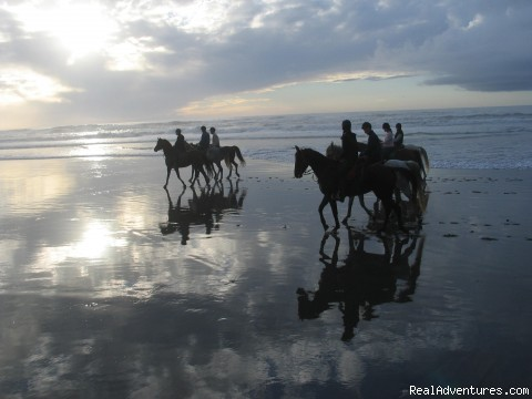 Mirror images in the sand - Adventures on horseback at Ricochet Ridge Ranch