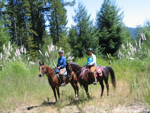 Horses and pampass grass - Adventures on horseback at Ricochet Ridge Ranch