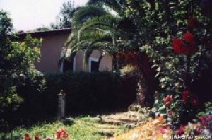 Roma Bed And Breakfast � ROMA, Italy Bed & Breakfasts