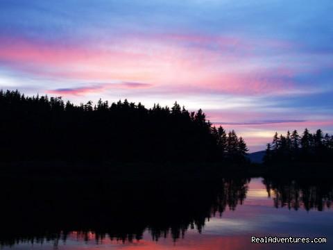 Image #20 of 26 - Alaska Yacht Charters Aboard Alaskan Song
