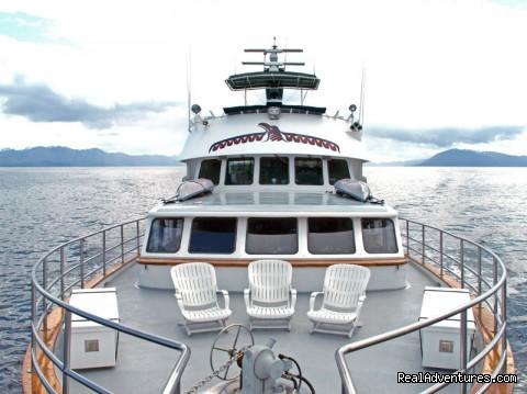 Image #25 of 26 - Alaska Yacht Charters Aboard Alaskan Song