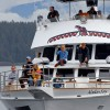 Whale watching on Alaskan Song