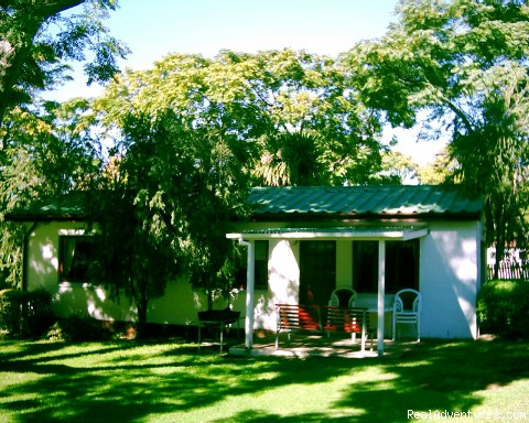 Cottage under trees - Allandale Holiday Cottages