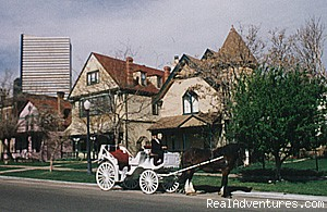 Historic Downtown Queen Anne Bed & Breakfast Inn Denver, Colorado Bed & Breakfasts