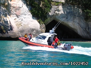 Cathedral Cove Cruises - Aotearoa Lodge & Tours for relaxed homely ambience