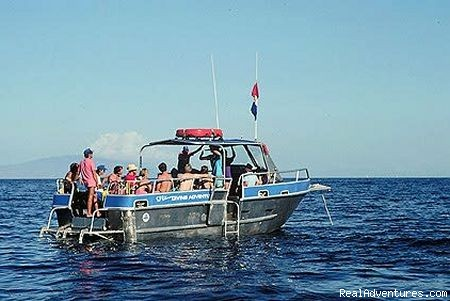 Custom Dive Boat | Image #5/5 | Ed Robinson's Diving Adventures
