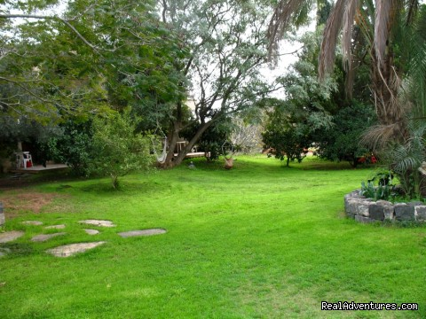 The yard - Karaso galillee country lodging