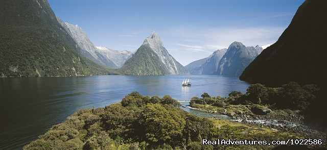 - Experience New Zealand Travel