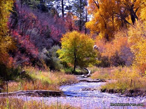 La Plata River (#26 of 26) - Blue Lake Ranch