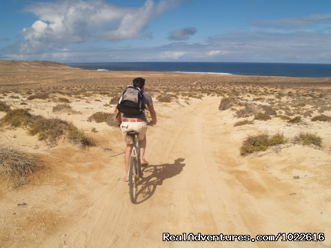 Cycling on La Graciosa Island - EcoLifeWalks, Sunny Island Spa + Biosphere Walks