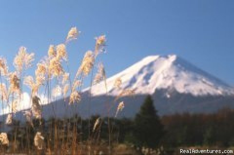 Mount Fuji | Image #3/9 | Eurolingua Institute Japan