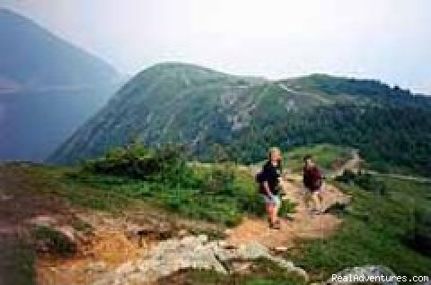 Cabot Trail - Hike & Walk with Scott Walking Adventures