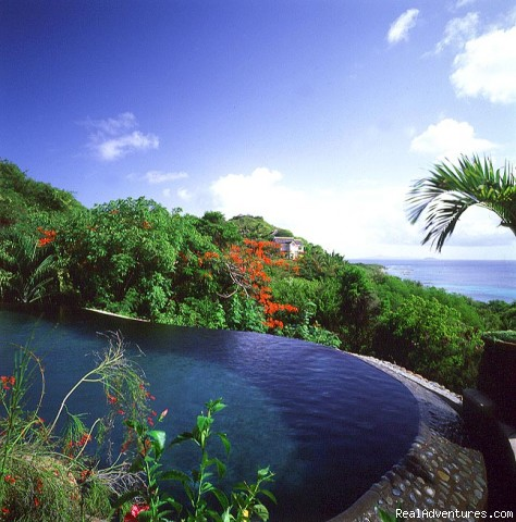 Firefly Mustique: Firefly swimming pool