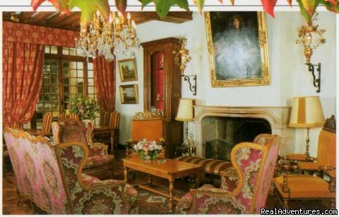 Salon Cheminée - Hotel Le Cep****