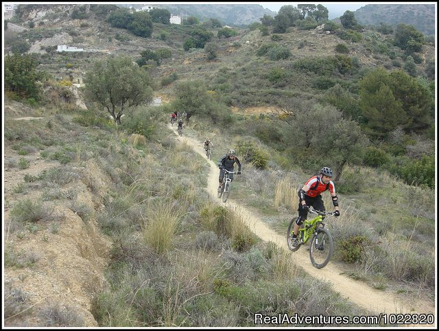 Mountain Bike Tours in Fuengirola, Andalucia