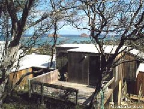 - Hawaiian Islands Bed & Breakfast