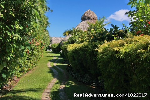 Gardens (#1 of 10) - Kariwak Village Hotel and Holistic Haven Tobago