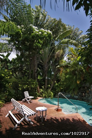 Waterfall Jacuzzi (#5 of 10) - Kariwak Village Hotel and Holistic Haven Tobago