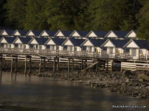 Guest Cabins - Legendary Alaska Sportfishing - Waterfall Resort
