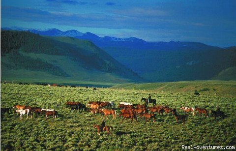Rounding up the horses - Laramie River Dude Ranch