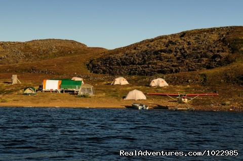 A Caribou Viewing Camp - Caribou, Autumn Colours & Aurora