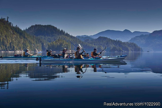 Orca Sea Kayak Trips in Johnstone Strait