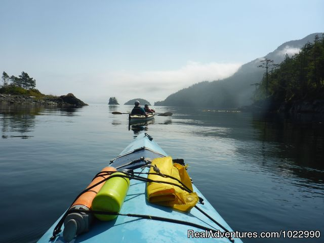 Johnstone Strait - Best Kayak Trips Johnstone Strait