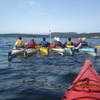 Sea Kayak Vacations on Vancouver Island Whale Watching Nanaimo, British Columbia
