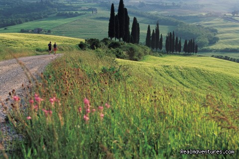 Tuscany Walking Tour (#2 of 9) - Backroads Italy Bike Tours