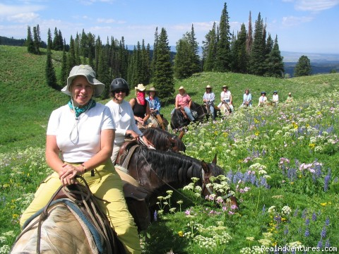 Tin Cup Trail - Horseback riding in the Tetons & Yellowstone Park