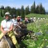 Horseback riding in the Tetons & Yellowstone Park