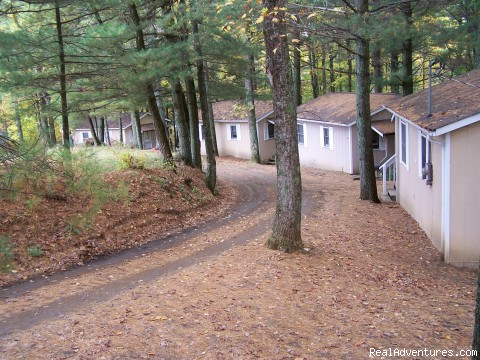 Cabins in the trees - Relaxing Mountain Get-A-Way at Mountain View Lodge