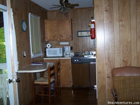 Cabin Kitchenette - Relaxing Mountain Get-A-Way at Mountain View Lodge