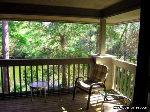 Porch overlooking best part of lagoon - Hilton Head Palmetto Dunes Condo Near Beach