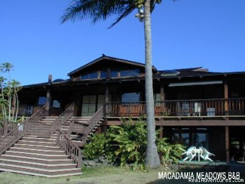 Macadamia Meadows Farm Bed & Breakfast