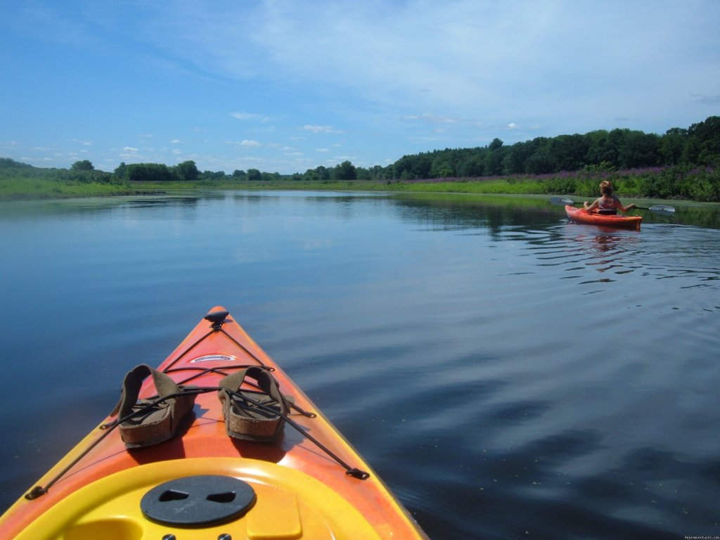 Kayaking Concord's three rivers | Image #8/9 | Hawthorne Inn- Relaxed elegance