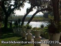 - The Lake House Bed and Breakfast