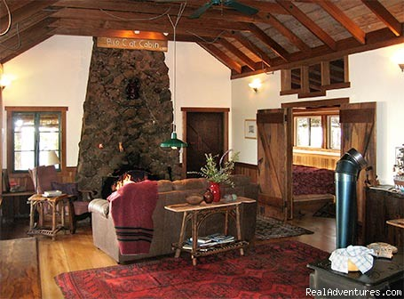 Living room at Big Cat Cabin - Artists' Loft and Cabins at Strawberry Hill