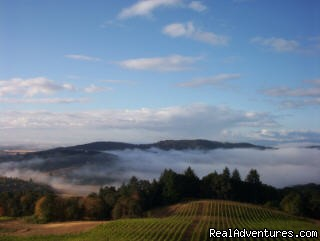 Sunrise in the sky | Image #4/7 | Oregon's Premier Wine Country Inn - Youngberg Hill