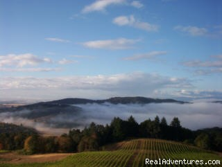 Sunrise in the sky - Oregon's Premier Wine Country Inn - Youngberg Hill