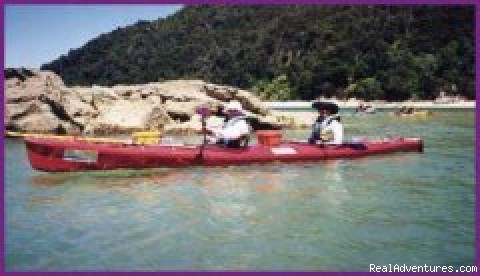 Kayaking in the Abel Tasman National Par - Black Sheep Touring Company