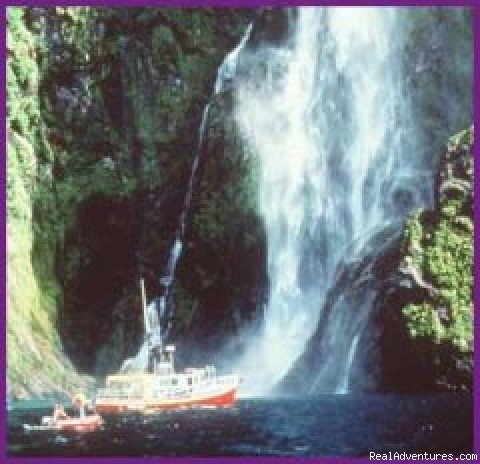 Milford Sound Boating - Black Sheep Touring Company