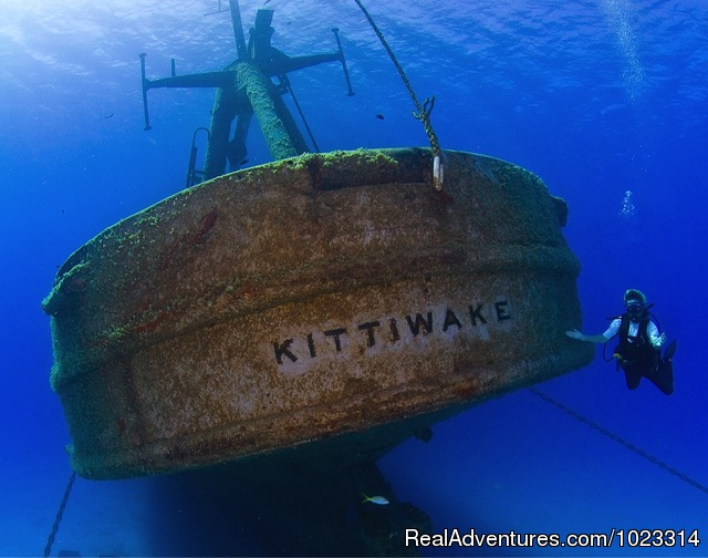 Kittiwake Dive with Divetech - Divetech @ Lighthouse Point