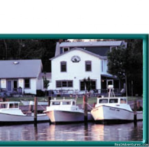 CHESAPEAKE WOOD DUCK INN Bed and Breakfast: B&B Ad