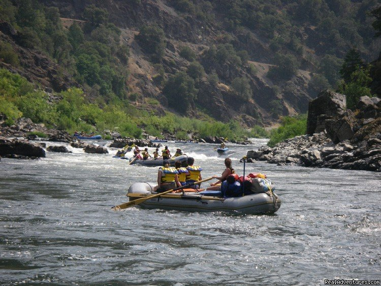 Rogue River Rafting | Image #1/16 | Salmon, Idaho  | Rafting Trips | Family Rafting Vacations on Famous Western Rivers