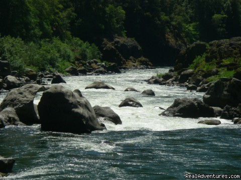 Blossom Bar Rapid, Rogue River - Family Rafting Vacations on Famous Western Rivers