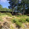 Paradise Lodge, Rogue River, Oregon