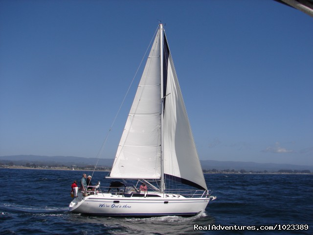 Image #2 of 3 - Pacific Yachting & Sailing