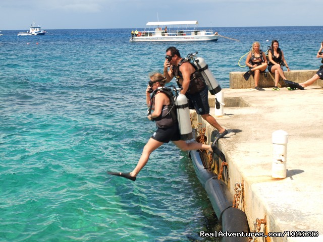 Brilliant Shore Diving - Don Foster's Dive Cayman, Ltd.